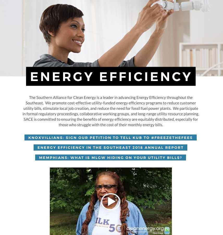 SACE nonprofit website redesign